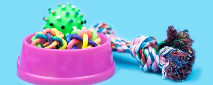 Los juguetes con los que podrás divertirte con tu mascota