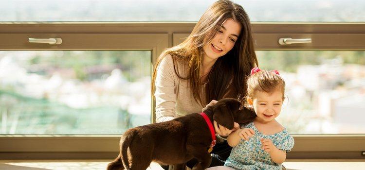 Familia con un cachorro