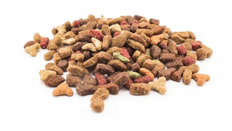 Se recomienda alimentarles con piensos hipoalergénicos