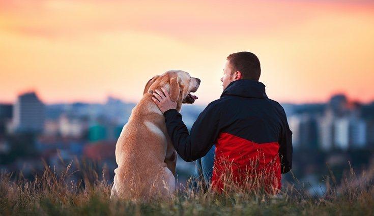 Perro con su dueño