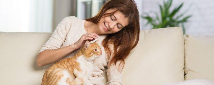 La sordera en los gatos influye mucho en la relación que tienen con sus dueños