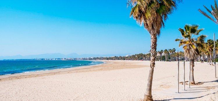 La Playa canina de Llevant solo está abierta en temporada de verano