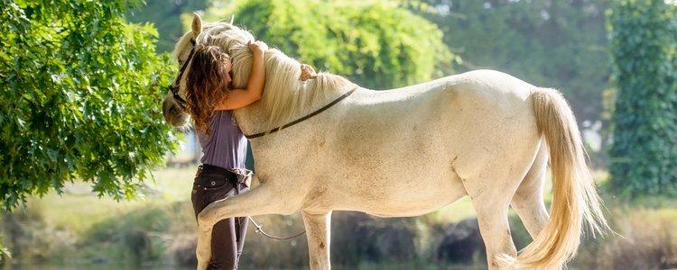 Mantener un caballo es algo muy costoso