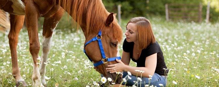 Hay formas de abaratar costes en cuanto a mantener un caballo