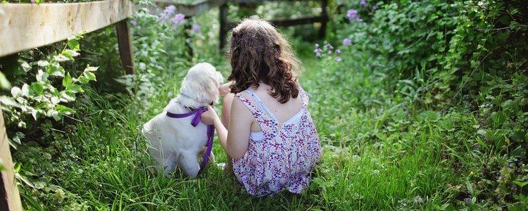 Tener una mascota aumenta el sentido de responsabilidad, sobre todo en la infancia