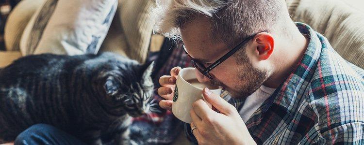 Gracias a las mascotas, es más fácil luchar contra la soledad