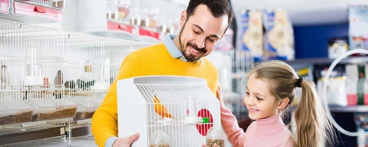 Hay que ubicar la jaula lejos de corrientes de aire por el bienestar de la mascota