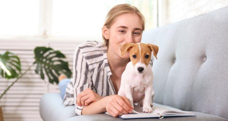 Antes de comprar o adoptar un perro debes decidir si estás plenamente seguro que tus intereses no van a cambiar a largo plazo