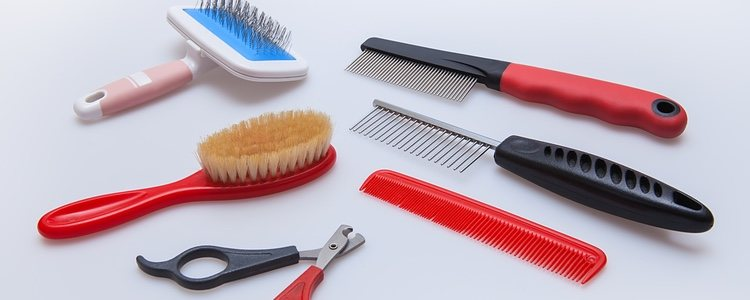 Un cepillo para pelo corto no te servirá para un perro de pelo largo