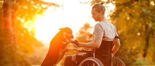 Perros de asistencia: cómo se educan para ayudar a las personas