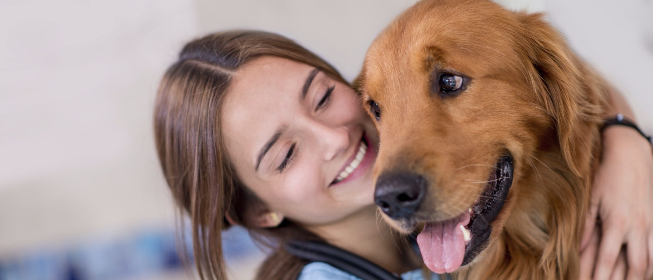 Cómo limpiar los ojos de un perro