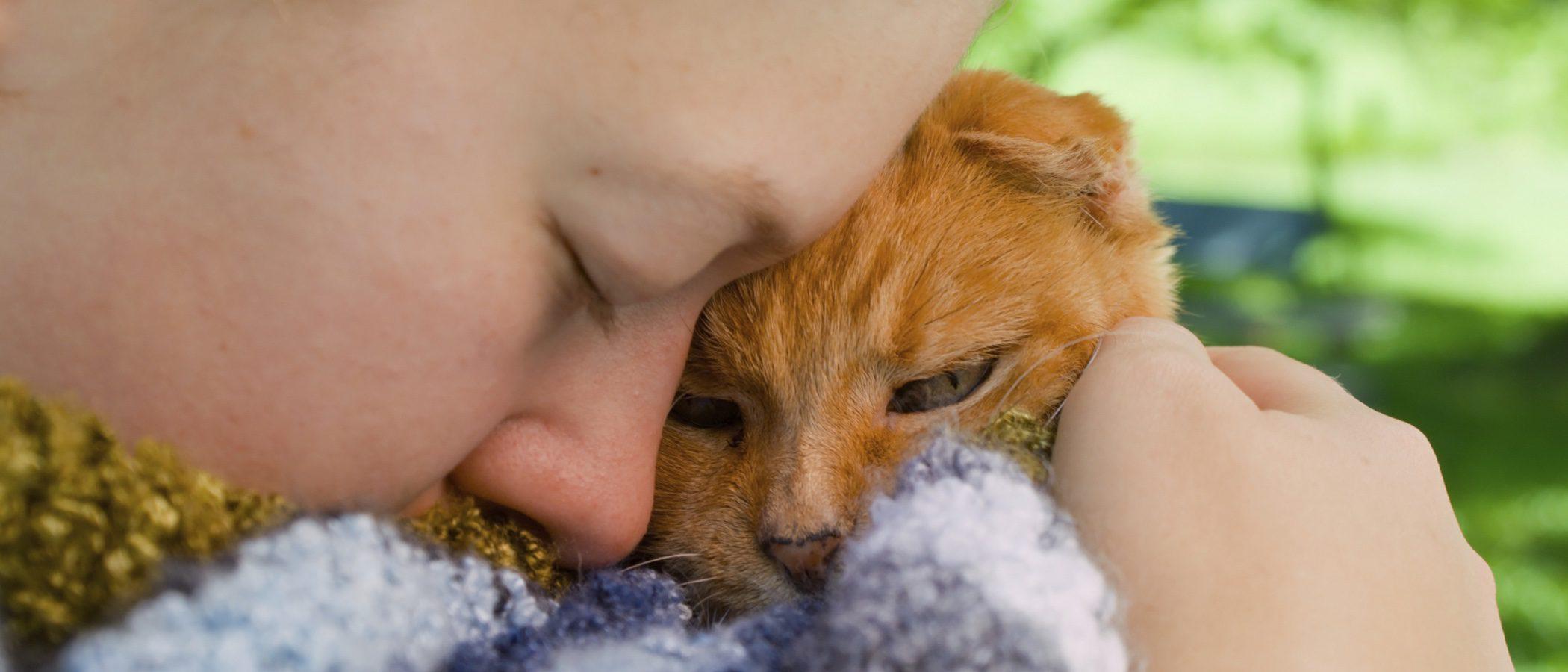 Cómo superar la pérdida de una mascota