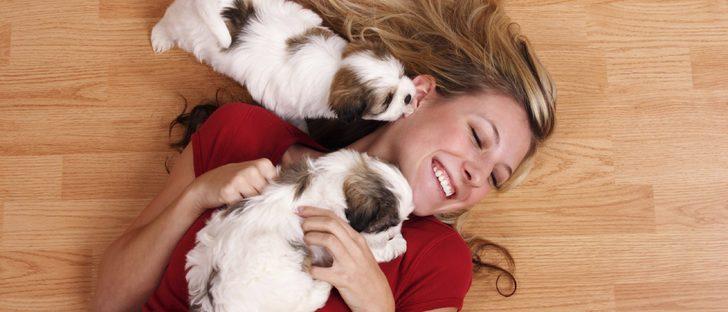 Razas de perros adecuadas para vivir en un piso