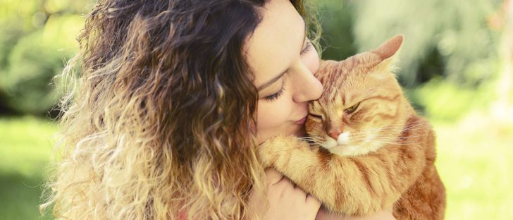 Me cambio de casa: Pautas para hacer que mi gato se integre en el nuevo ambiente