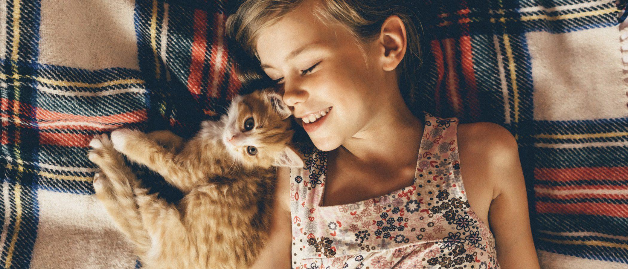 Planes que hacer en verano al lado de tu gato