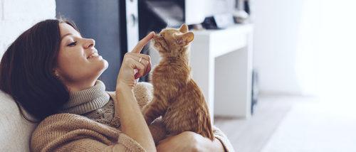 ¿De qué colores pueden los gatos tener los ojos?