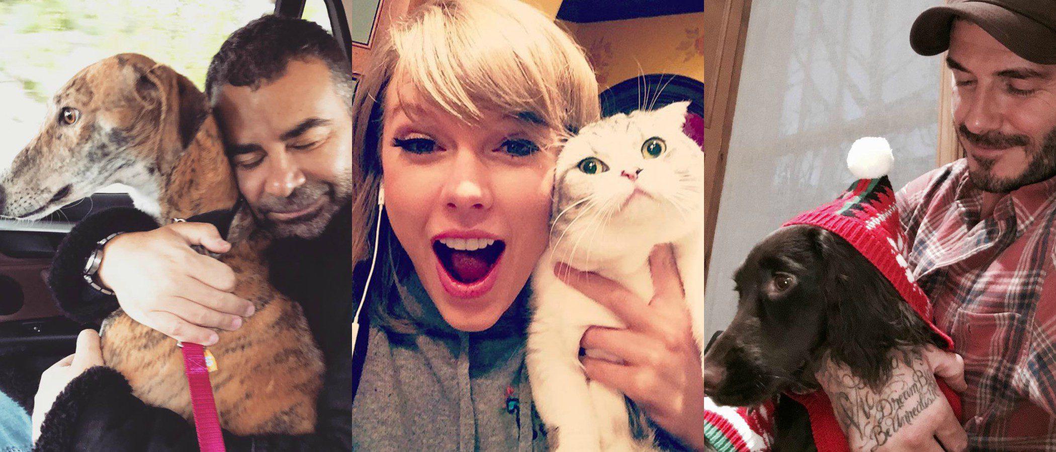 Los famosos y sus mascotas: Así disfrutan de sus 'peluditos'