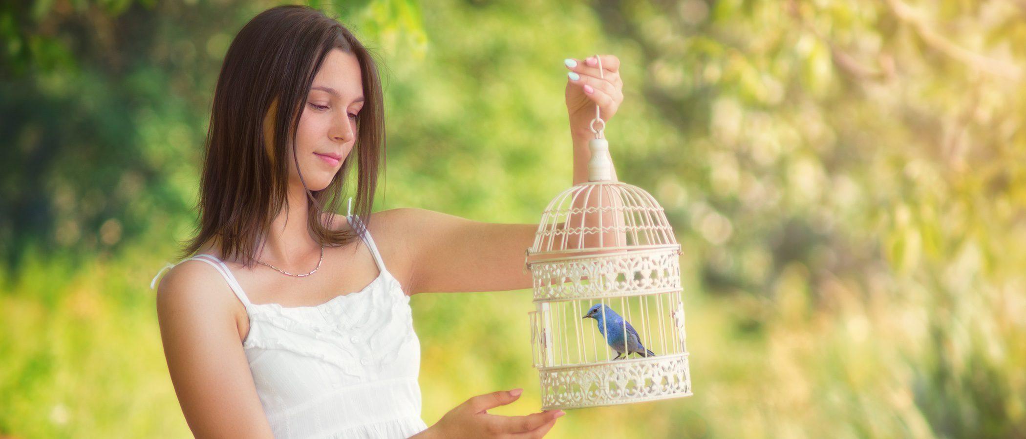 Aprende a construir una jaula bonita para tu pájaro