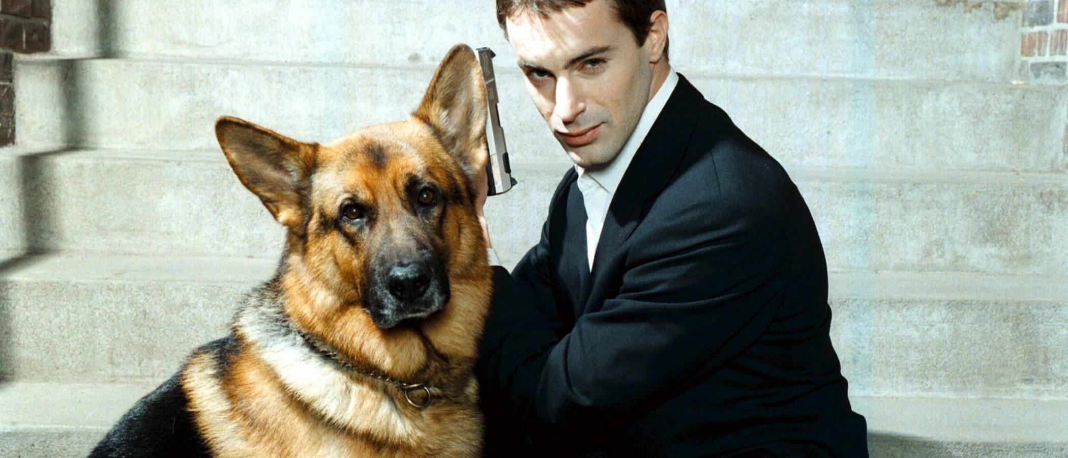 Razas de perros Policía, ¿cuáles son las más adecuadas?