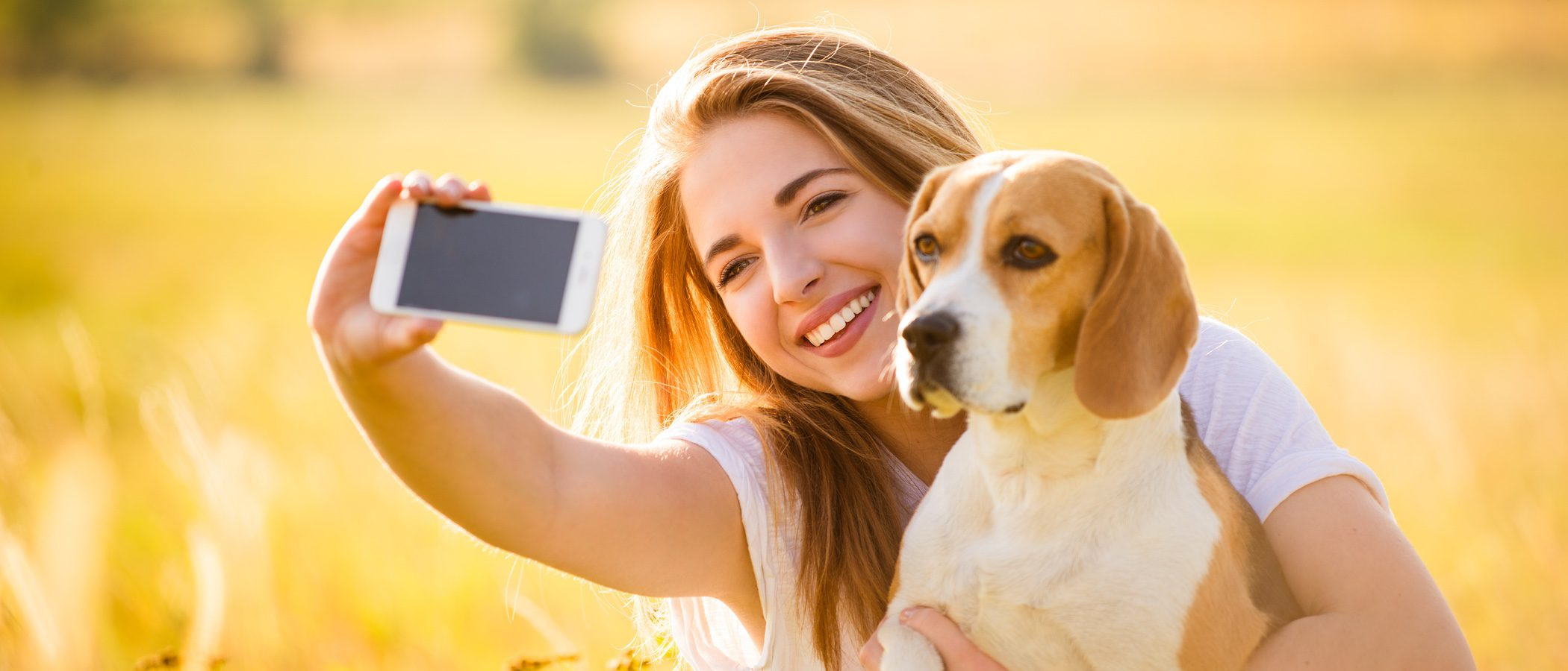 Cómo sacar buenas fotos a nuestras mascotas