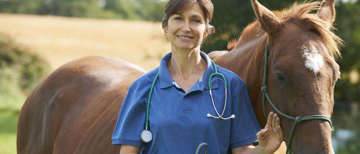 La equinoterapia: Los caballos pueden ser de gran ayuda