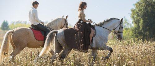 ¿Se puede tener un caballo como mascota?