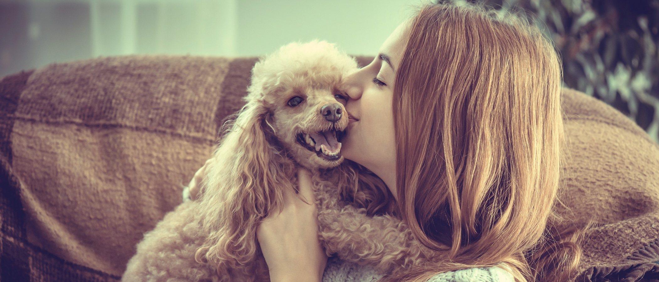 Cómo decirle a tu perro que le quieres