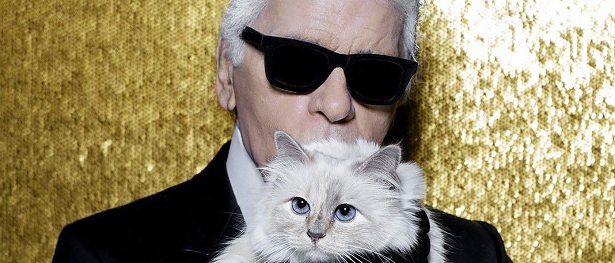 La historia de Choupette, la gata influencer y heredera de la fortuna de Karl Lagerfeld