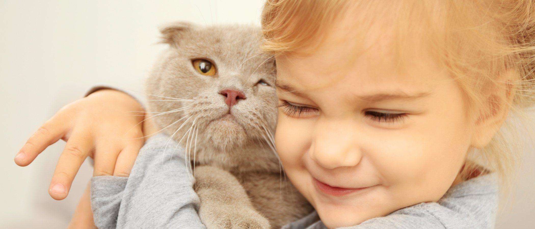 Las mejores razas de gatos para convivir con niños y niñas