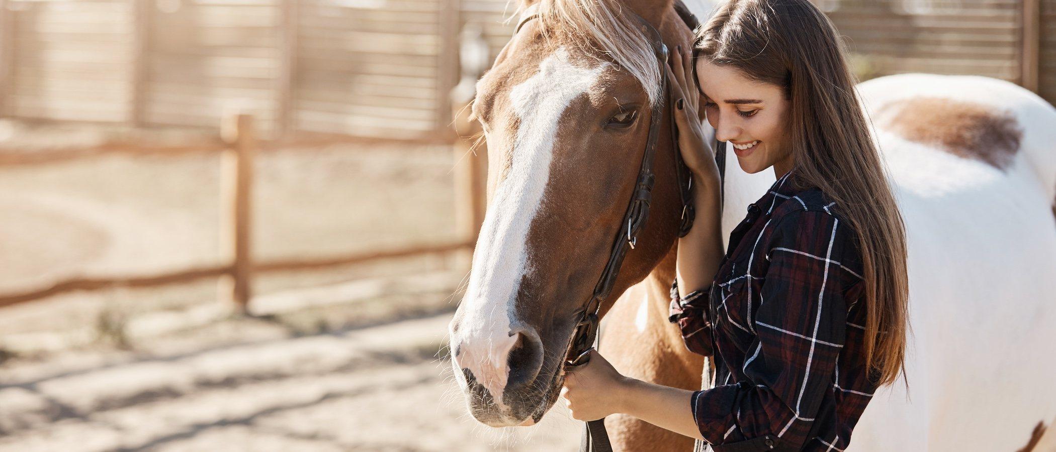 Cuánto cuesta mantener un caballo como mascota