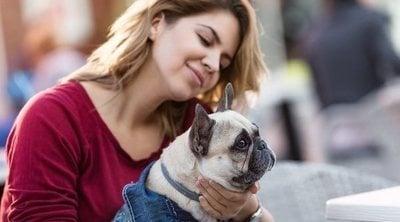 Normas para entrar con tu perro en centros comerciales