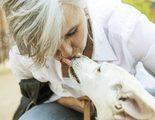 Cuando sacrificar a tu perro es la �nica opci�n