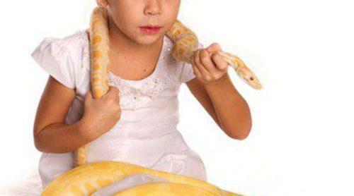 Los peligros de tener una serpiente como mascota