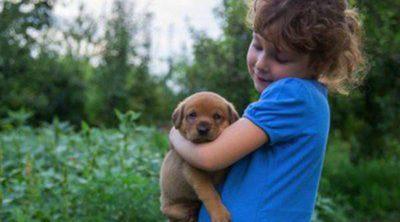 Cómo evitar que tu hijo se libre de cuidar a su perro