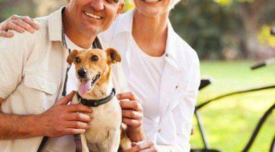 Razas de perros adecuadas para vivir con gente mayor