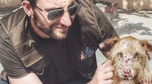 Dani Rovira, un actor implicado en la búsqueda de hogar para los animales más desfavorecidos