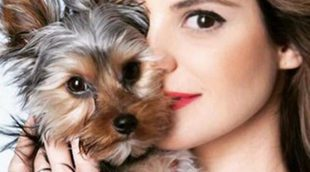 Rufus Junior: El Yorkshire Terrier 'toy' inseperable de Marta Torné