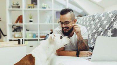 Me cambio de casa: Pautas para hacer que mi perro se integre en el nuevo ambiente