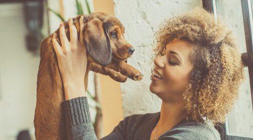 Consejos para cuidar a un perro recién nacido prematuro