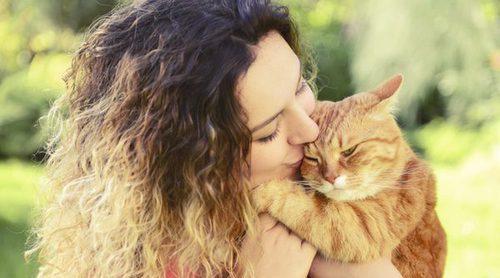Las 10 razas de gato más cariñosas