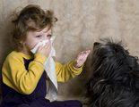 S�ntomas de ser al�rgico a los perros