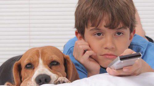 10 películas protagonizadas por perros