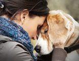 �Qu� hago si tengo que sacrificar a mi perro?