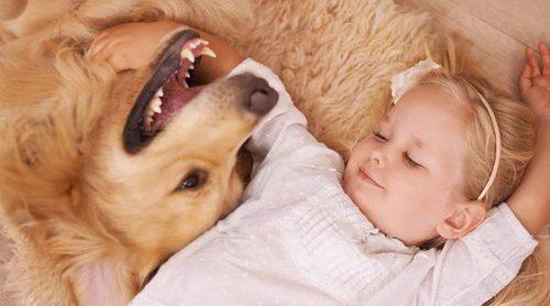 Enseña a tus hijos a cuidar de su mascota a través del juego