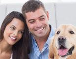 Cuando los animales son una propiedad: �qu� pasa si me divorcio?