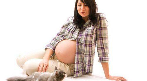 ¿Embarazada y con mascota? No te lo pierdas