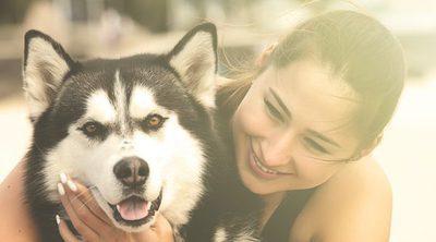 Razas de perro con un pasado sorprendente