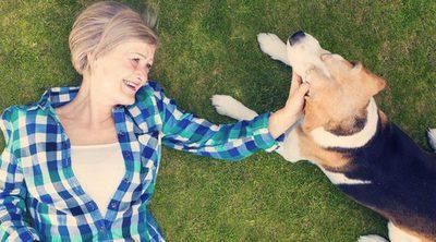 5 razas de perro ideales para terapia