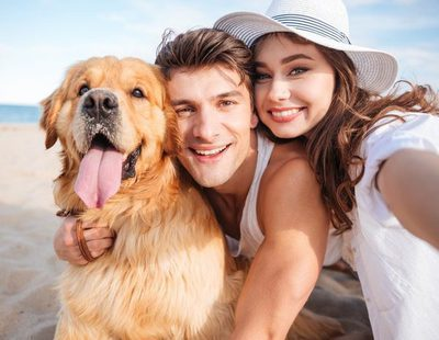 7 Diferencias entre un amante de los perros vs. una madre/padre de perros