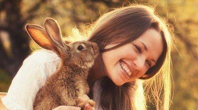 Razas de conejo: ¿cual te quedas como mascota?